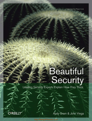 Beautiful Security – Leading Security Expert Explain How They Think, Pdf Free Download