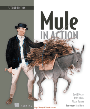 Free Download PDF Books, Mule in Action, 2nd Edition