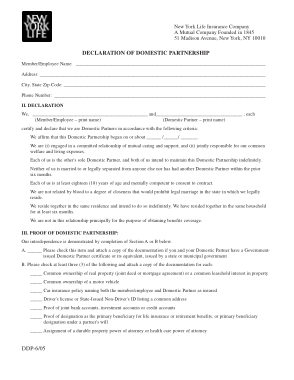 Free Download PDF Books, Domestic Partnership Agreement Form Template