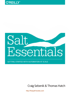 Free Download PDF Books, Salt Essentials Book