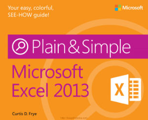 Microsoft Excel 2013 Plain Simple