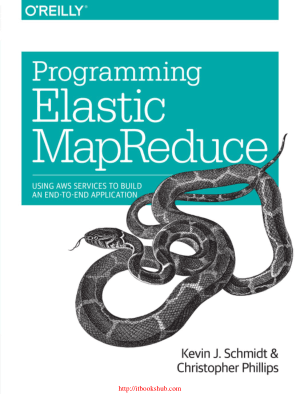 Free Download PDF Books, Programming Elastic MapReduce