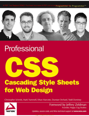 Professional CSS For Web Design