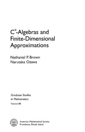 C* Algebras and Finite Dimensional Approximations – FreePdf-Books.com